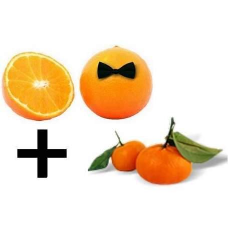 Box 7,5 Kilogramm gemischten Orangensaft und 7,5 Kilo Mandarinen.