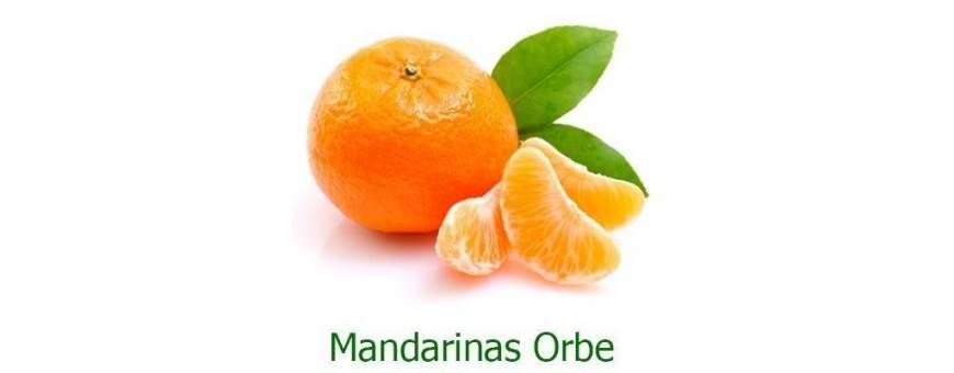 Mandarinas orbe
