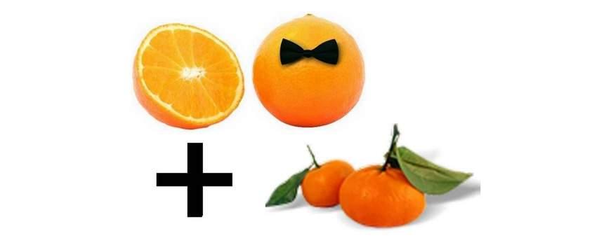 Venta de cajas mixtas de Naranjas y Mandarinas. Tienda cítricos online