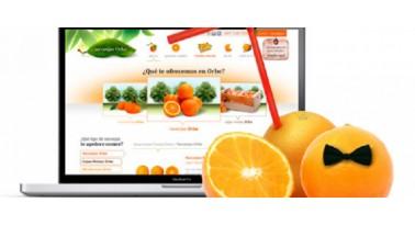 colaboracion con blogs de cocina para presentar nuestros productos de la tienda